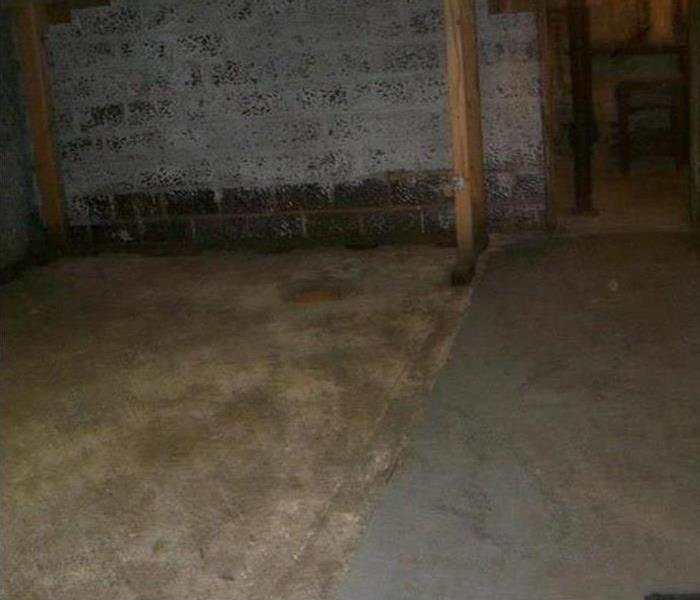 Basement with brick walls and concrete floor