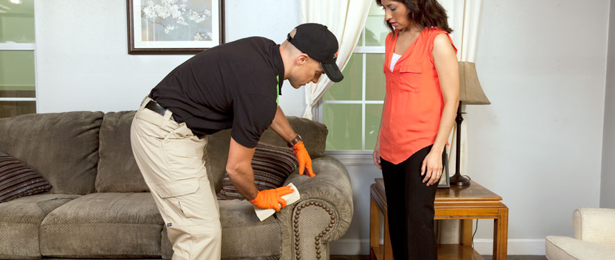 East Brunswick, NJ carpet upholstery cleaning