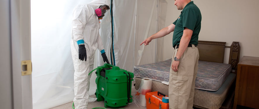 Somerset, NJ mold removal process